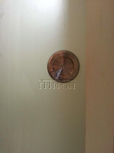 Раздвижная стеклянная матовая дверь с пекоструйным рисунком (Нижний Новгород) 02