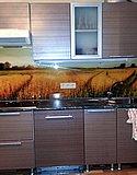 Стеклянный кухонный фартук с уф-фотопечатью (Нижний Новгород)